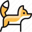 fox, body