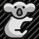 koala, body
