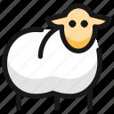 livestock, sheep, body