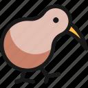 bird, wild
