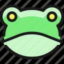 amphibian, frog