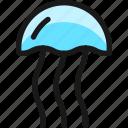 jellyfish, box