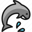 mammal, dolphin, marine