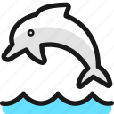 marine, mammal, dolphin