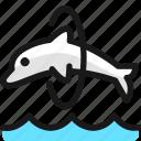 marine, mammal, dolphin, jump