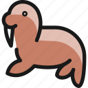 marine, mammal, seal, body
