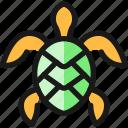 mammal, turtle, marine