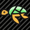 marine, mammal, turtle