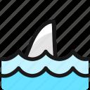 shark, fin