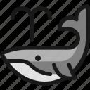 whale, body