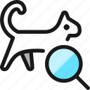 pet, tracking, cat, search