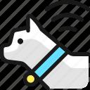 pet, tracking, cat, signal