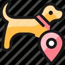 pet, tracking, dog, location