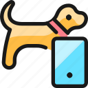 pet, tracking, dog, smartphone