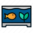 animal, fish, pet, tank, veterinary