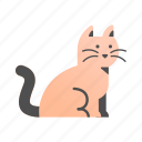 animal, cat, cute, friendship, kitten, pet, petting icon