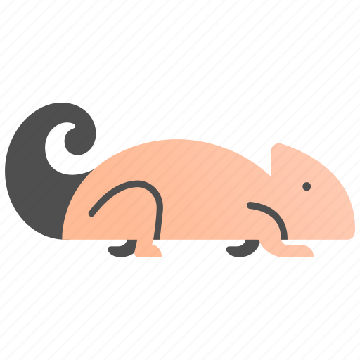Beautiful, chameleon, cute, funny, lizard, pet, reptile icon - Download on Iconfinder
