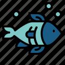 animals, aquatic, fish, life, sea icon