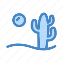 cactus, desert, garden, mexico, sahara