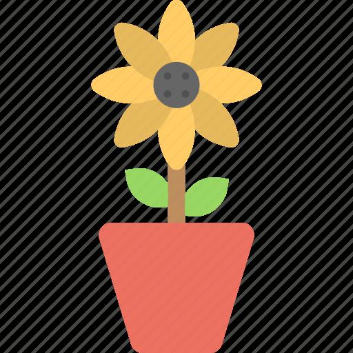 blossom, botany, ecology, plant, sunflower icon