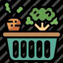 basket, bottles, camping, food, picnic, restaurant, vegetable