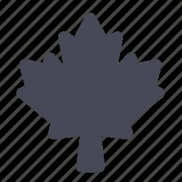 canada, green, leaf, maple, nature, organic, plant icon