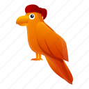 baby, face, nature, parrot, pirate, retro