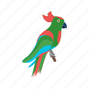 beak, bird, cartoon, colorful, hat, parrot, pirate icon
