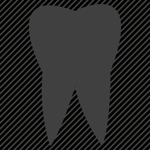 dental, dental doctor, dental hospital, dentist, teeth icon