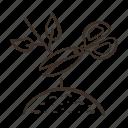 pruning, cut, scissors, stem icon