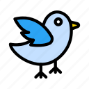 air, birds, fly, sparrow, wings icon