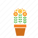 decoration, floer, flowers, garden, nature, plant, pot icon