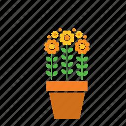 decoration, floer, flowers, garden, nature, plant, pot icon