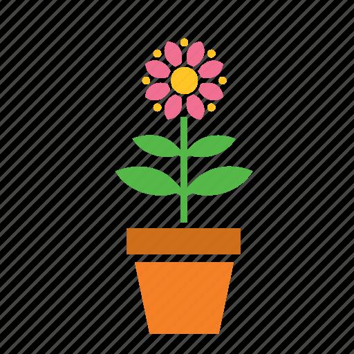 decoration, flower, garden, nature, plant, pot icon