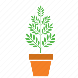 decoration, garden, nature, plant, pot, tree icon