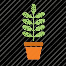 decoration, garden, nature, plant, pot icon