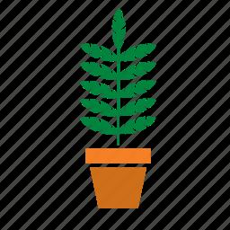 decoration, garden, nature, plant, pot, tree icon