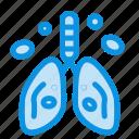 cancer, heart, lung, organ, pollution