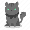 cat, evil, feline, halloween, horror, kitten, witch