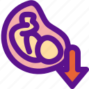 baby, down, position, pregnant icon