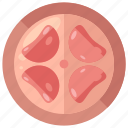 female, organ, pregnancy, reproductive, uterus icon