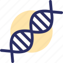 chromosome, dna, gene, genetic biology, genetic cell icon