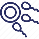 chromosomes, fertility, fertilization, gene, semen, sex, sperms icon