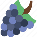 cooking, eat, food, grapes, kitchen, meal icon