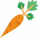 carrot, cook, eat, food, kitchen icon