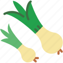 cook, eat, food, kitchen, onions icon