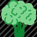 brocolli, cook, eat, food, kitchen icon