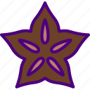 anise, cook, eat, food, kitchen, star icon