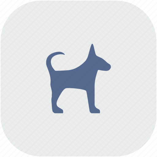 dog, gray, puppy, rounded, square, young icon