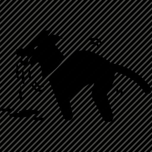 animal, crazy, dog, mad, rabies, virus icon